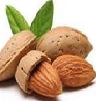 logo saop design almond