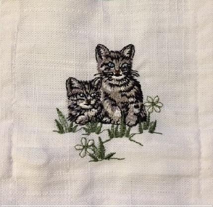 lav sachet sq cat